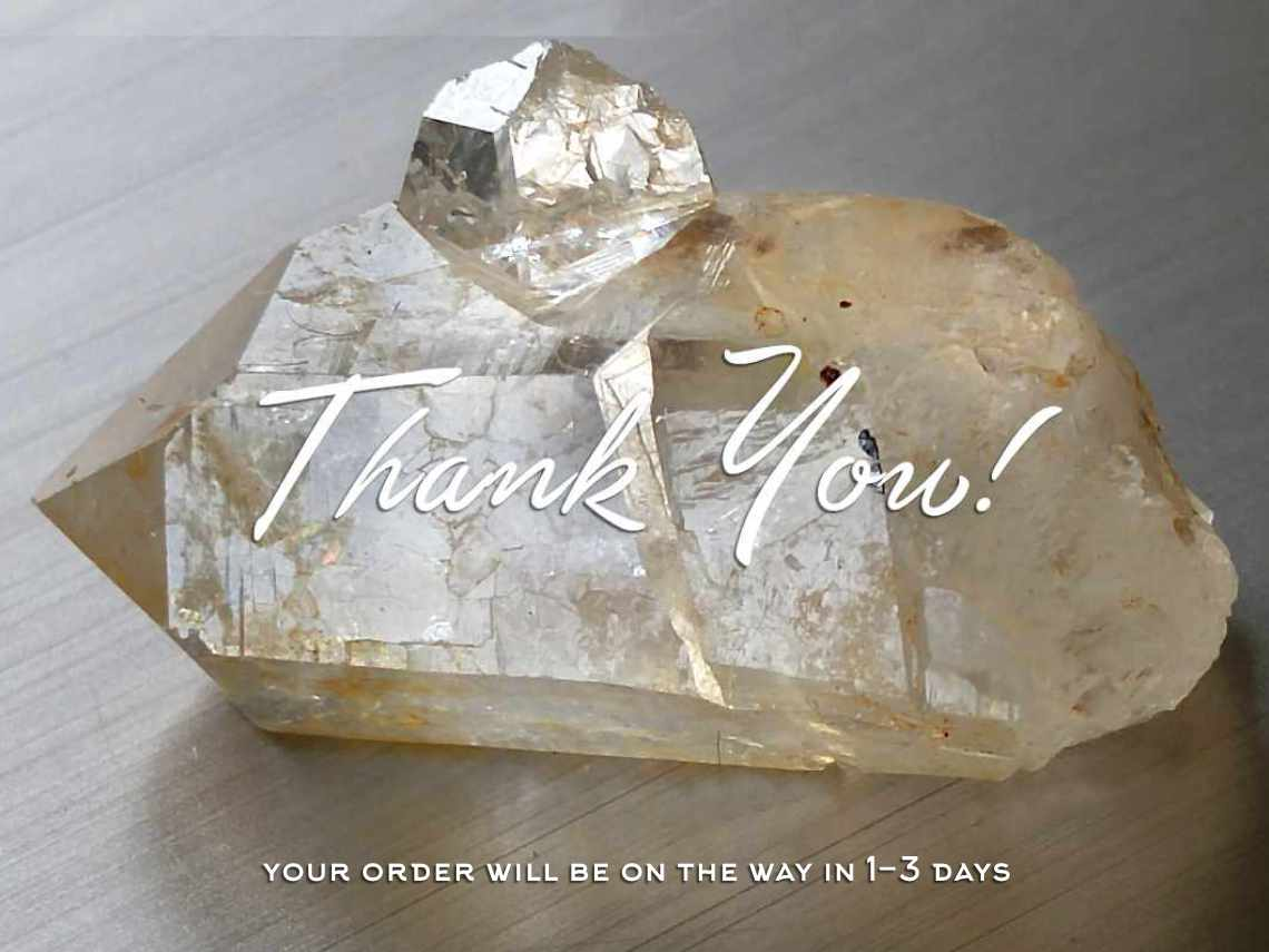 Thank you for your order!